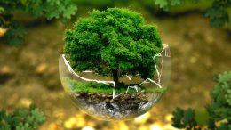 Environmental Juristic Personhood; A voice to the jaw of Environment